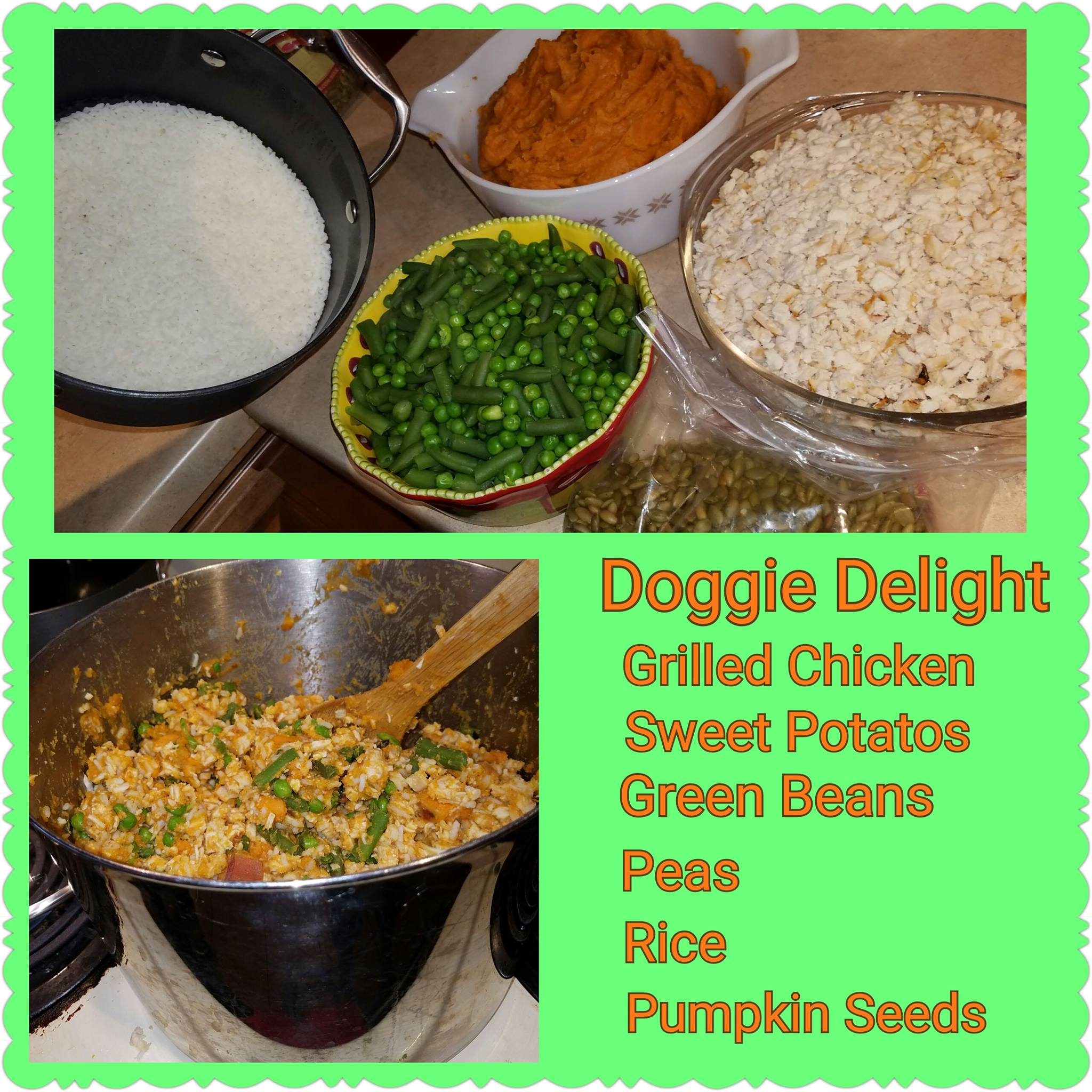 Puppy days little treasures tried out a new recipe for our babies they loved it oh our dogs like to get pumpkin seeds as treats throughout the day so we only put a handful in this forumfinder Gallery